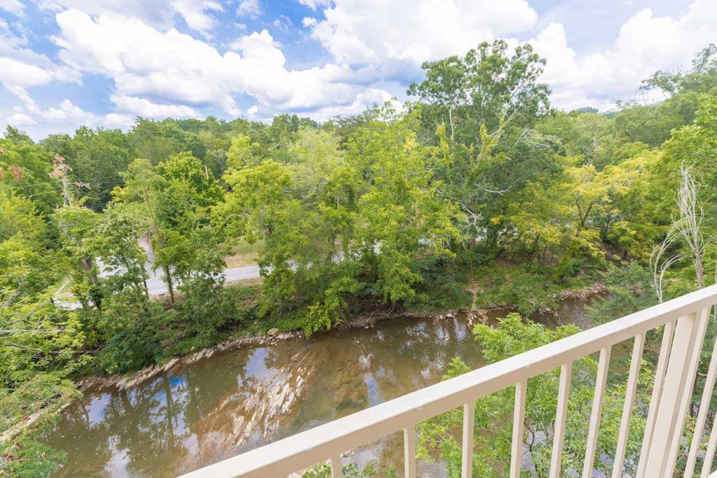 Balcony with view of Pigeon River
